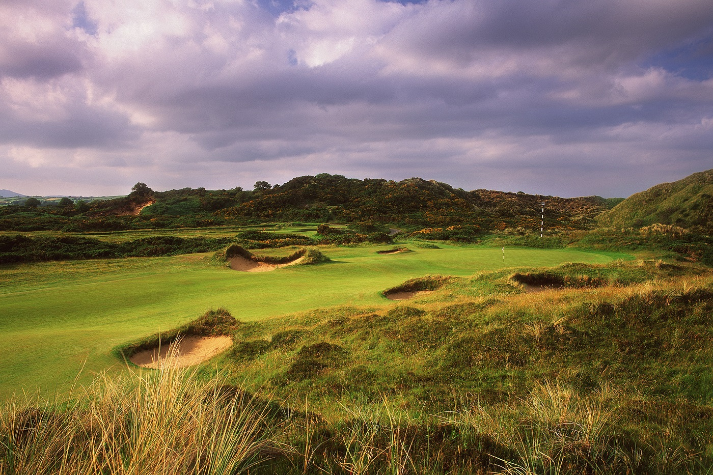 Perrygolf 39 S Gallery For Royal County Down